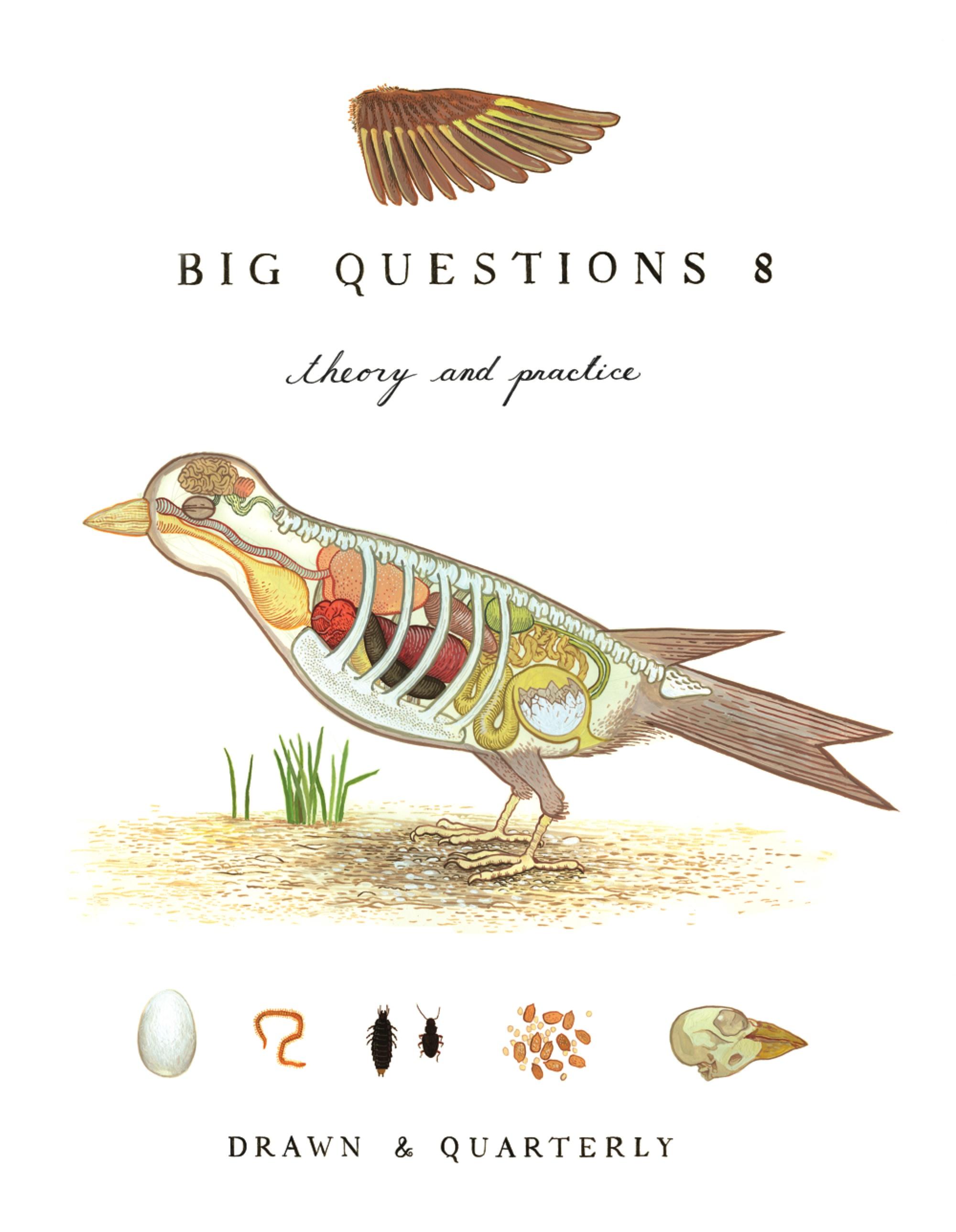 Big Questions #8